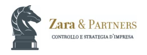 Zara & Partners Holding
